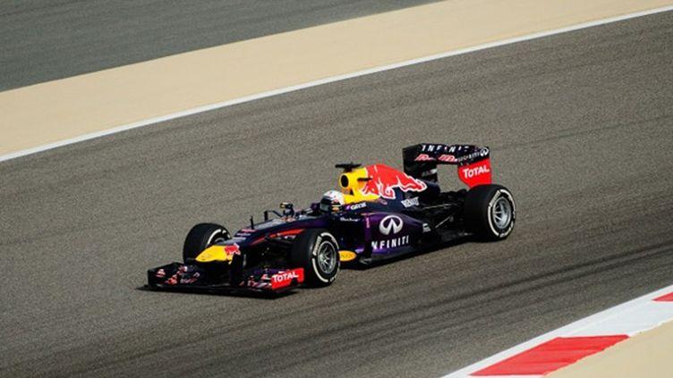 Sebastien Vettel (Red Bull)
