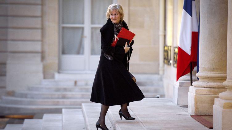 La ministre de l'Apprentissage, Nadine Morano, à l'Elysée (Paris), le 18 janvier 2012. (LIONEL BONAVENTURE / AFP)