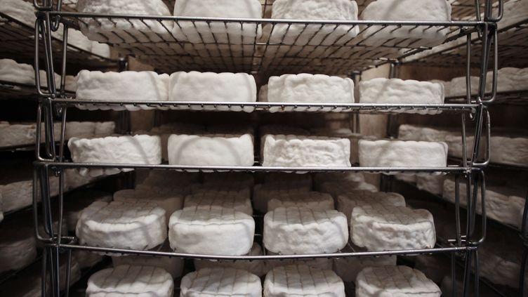 Dans une fabrique de Camembert, à Camembert (Orne), le 11 avril 2013. (CHARLY TRIBALLEAU / AFP)
