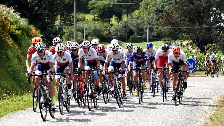 Le Tour de l'Avenir lors de l'édition 2017 (NICOLAS CR?ACH / MAXPPP)