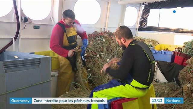 Guernesey : zone interdite pour les pêcheurs français