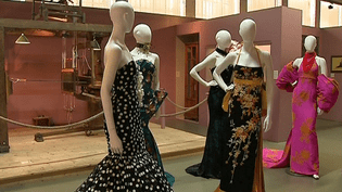 Exposition Denis Durand au musée des Soieries de Jujurieux dans l'Ain  (France 3 / Culturebox )