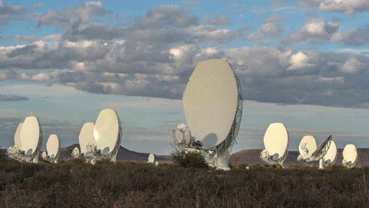 Le 13 juillet 2018, l'Afrique du Sud a dévoilé le radiotélescope MeerKAT, réseau de 64 antennes installées dans le désert du Karoo. (MUJAHID SAFODIEN / AFP)