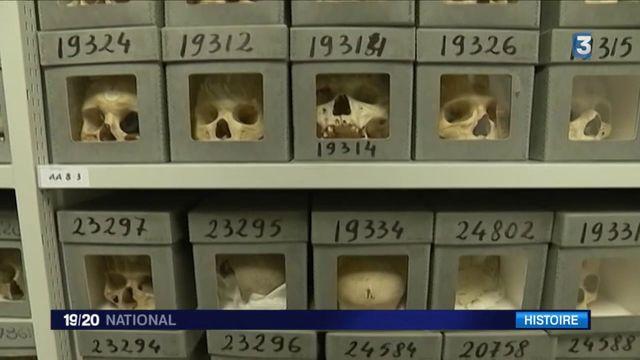 Histoire : vers une restitution des crânes de combattants algériens ?