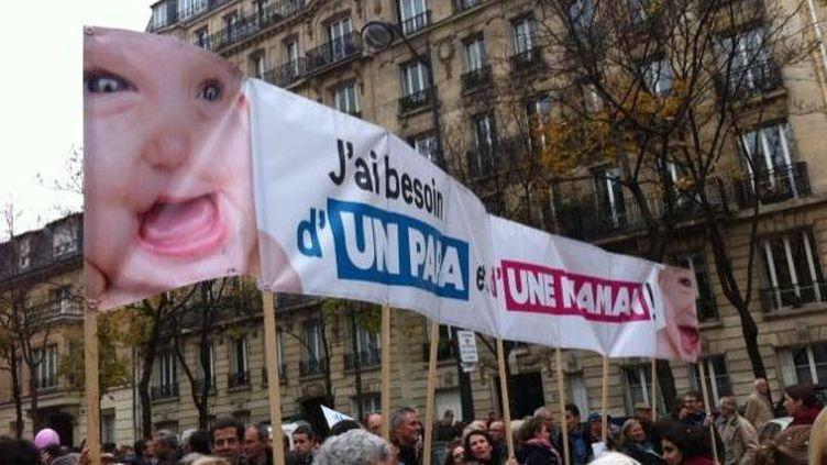 Plusieurs milliers de personnes ont défilé, samedi 17 novembre 2012 à Paris contre le projet de loi sur le mariage des homosexuels. (VINCENT DANIEL / FRANCETV INFO)