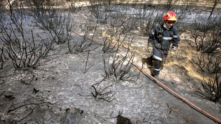 Un pompier sur un terrain calciné par les flammes à Bouleternère (Pyrénées-Orientales), le 22 juillet 2012. (GEORGES GOBET / AFP)