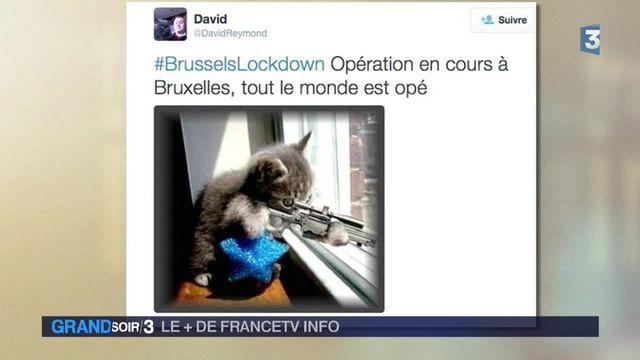 Le + de Francetv Info
