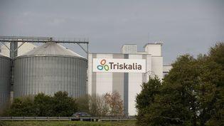 La coopérative agricole Triskalia mise en cause par un éleveur des Côtes d'Armor suite à une erreur de livraison. (DAVID ADEMAS / MAXPPP)