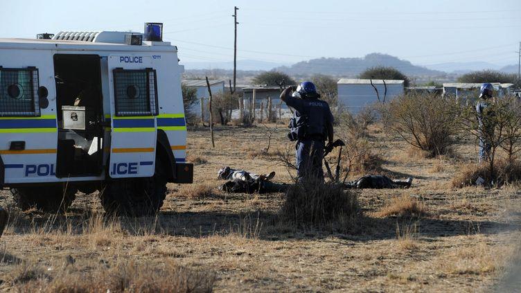 La police contrôle des mineurs allongés sur le sol à Marikana, le 16 août 2012. ( AFP )