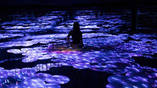 Des flots virtuels inventés par le collectif teamLab, dans leur nouveau musée qui ouvrira en juin à Tokyo  (Behrouz Mehri / AFP)