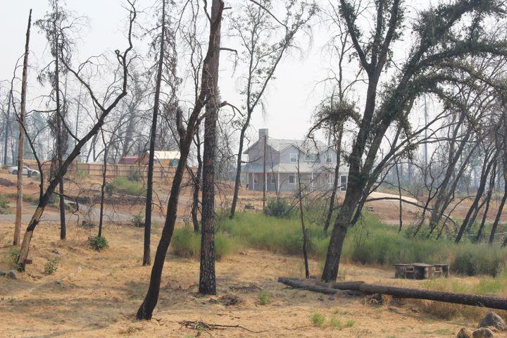 Une maison derrière des arbres morts à Paradise (Californie), le 21 septembre 2020. (ROBIN PRUDENT / FRANCEINFO)