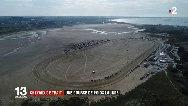 Finistère : une course de chevaux de trait sur la plage