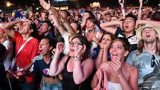 """Des supporters des Bleusdans la """"fan zone"""" de la Tour Eiffel, lors de la finale de l'Euro entre la France et le Portugal, le 10 juillet 2016. (BORIS HORVAT / AFP)"""