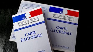 L'élection présidentielle démarre en outre-mer, samedi 22 avril 2017. (MAXPPP)