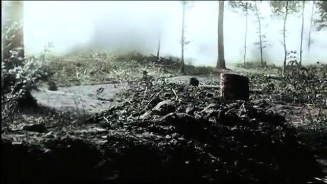 """""""Apocalypse : Verdun"""""""