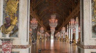 Après sept mois de fermeture, le château de Versailles s'apprête à rouvrir ses portes, mercredi 19 mai. A l'intérieur du château et dans les jardins, le personnel s'affaire pour le présenter aux visiteurs sous son plus beau jour. (CAPTURE ECRAN FRANCE 2)