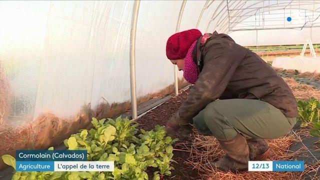 Agriculture : le pari de la ruralité des jeunes citadins
