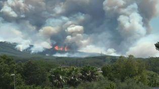 Capture d'écran montrant l'incendie dans le parc national du Vésuve en Italie, le 11 juillet 2017 (REUTERS)