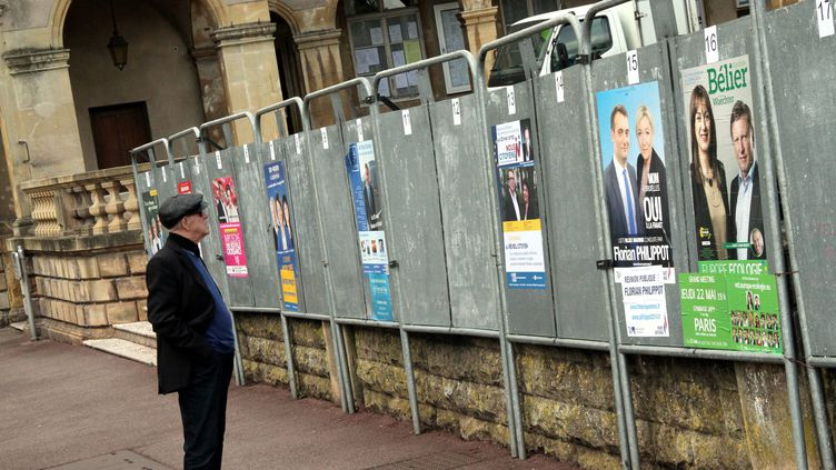 Un homme observe les panneaux électoraux pour la campagne des européennes, le 12 mai 2014, à Thionville (Moselle). (  MAXPPP)