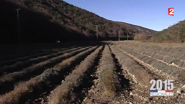 Régionales 2015 : dans ce village de la Drôme où le FN a fait chou blanc