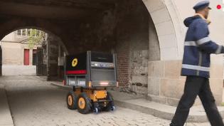 Courrier : le facteur est un robot (France 2)