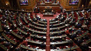 L'hémicycle du Sénat. (OLIVIER CORSAN / MAXPPP)