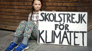 Greta Thunberg fait la grève de l'école pour le climat tous les vendredis depuis août 2018 devant le Parlement suédois. Photo prise le 5 septembre 2018. (STEFAN JERREVANG / AFTONBLADET / TT NEWS AGENCY / AFP)