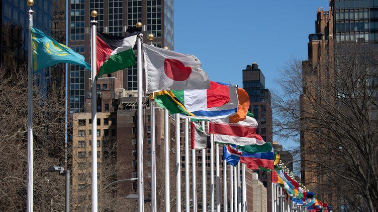 Les drapeaux des pays membres flottent devant le siège de l'ONU à New York, le 1er avril 2019. (RALF HIRSCHBERGER / DPA)