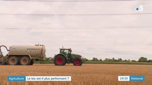 Agriculture : le bio est-il plus performant ?