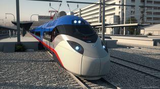 C'est ce train à grande vitesse conçu par Alstom qui circulera entre Boston et Washington. (© ALSTOM/MECONOPSIS)