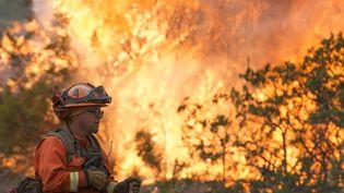 Photo de l'incendie qui touche le comté de Colusa en Californie le 7 août 2018 (TERRY SCHMITT / MAXPPP)