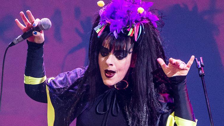 Nina Hagen annule une série de concerts en France  (BERND VON JUTRCZENKA / AFP)
