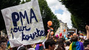 """Une pancarte """"PMA pour toutes"""", lors de la marche des fiertés à Rennes, le 8 juin 2019. (MAUD DUPUY / HANS LUCAS / AFP)"""