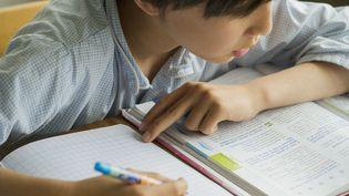 De nouveaux manuels scolaires vont être imprimés à l'été 2016 pour les classes de primaire et decollège. (MAXPPP)