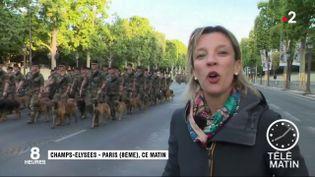 Soldats, officiers, engins, cavalerie... Tous sont au garde-à-vous sur les Champs-Élysées cette semaine pour préparer le défilé du 14-Juillet. (FRANCE 2)