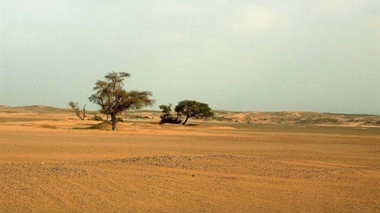 Le désert au sud de l'Algérie, dans la région de Djanet, où une touriste italienne a été enlevée (2003) (AFP / Hocine Zaourar)