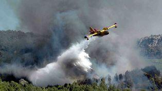 Incendie dans lemassif des Corbières en 2005 (MAXPPP)