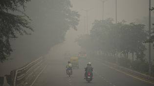 Une artère de New Delhi, la capitale indienne, sous un épais nuage de pollution, le 3 novembre 2019. (SAJJAD  HUSSAIN / AFP)