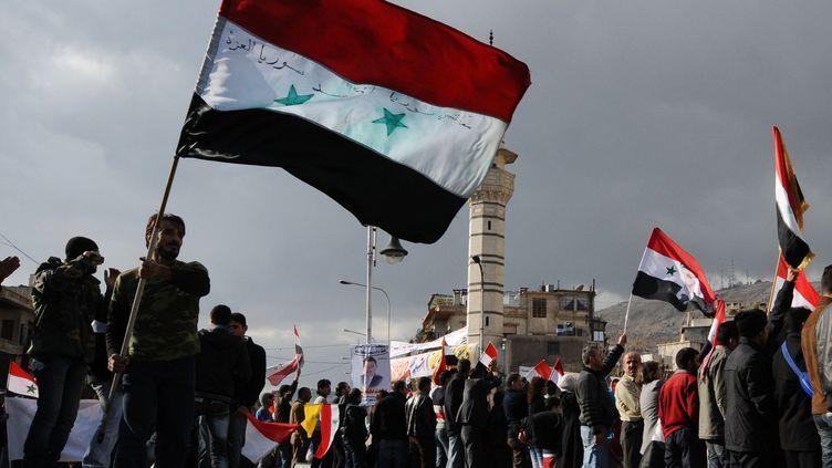 Des Syriens favorables au régime de Bachar Al-Assad agitent le drapeau de leur pays à Damas (Syrie), le 9 décembre 2011. (REUTERS)