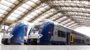 Des trains TER à l'arrêt dans la gare de Lille (Nord), le 13 juin 2014. (PHILIPPE HUGUEN / AFP)