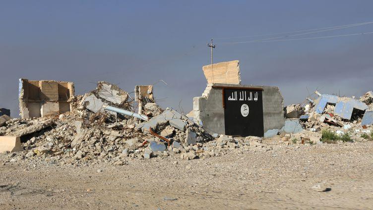 Un bâtiment détruit sur lequel on voit le drapeau noir du groupe Etat islamique, à al-Alam en Irak, en mars 2015. (THAIER AL-SUDANI / X90151)