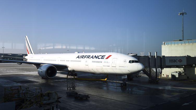 Un avion d'Air Francesur le tarmac de l'aéroport Roissy-Charles de Gaulle, le 20 janvier 2017. (BERTRAND GUAY / AFP)