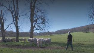 Agriculteurs (FRANCEINFO)