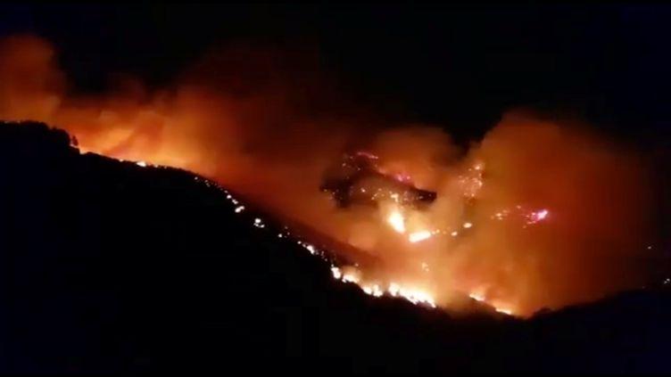 Une photo de l'incendie sur l'île Grande Canarie entre les villages deJuncalillo et Pinos de Galdar, le 11 août 2019. (SOCIAL MEDIA / REUTERS)
