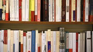 Des livres exposés dans les rayons d'une librairie à Rennes,le 5 septembre 2017 (photo d'illustration). (DAMIEN MEYER / AFP)