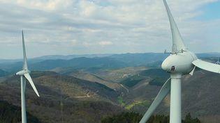 Écologie : les Français ne plient pas face aux éoliennes (France 2)