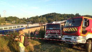 La motrice d'un TGV avec 800 personnes à bord a pris feu au niveau de Saint-Quentin-Fallavier (Isère) pour une raison accidentelle, vendredi 21 août 2015. (DENIS SEBASTIEN / FRANCE 2)
