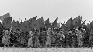 Les volontaires marocains participant à la Marche verte, le 7 novembre 1975, longent les fils barbelés de la frontière espagnole du Sahara occidental. Ce territoire passera sous administration marocaine avec l'accord hispano-marocco-mauritanien de Madrid du 14 novembre 1975. (GEORGES BENDRIHEM / AFP)