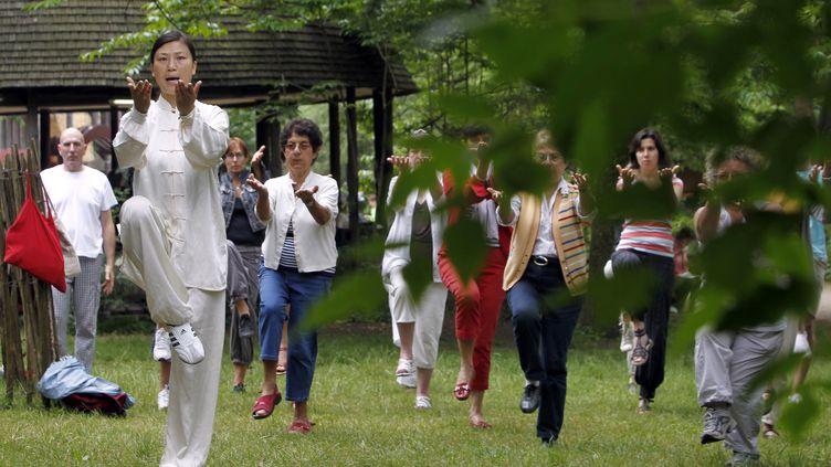 Un cours de Qi Gong à l'occasion de la journée nationale du Qi Gong, le 6 juin 2010, au Bois de Vincennes, à Paris. (FRANCOIS GUILLOT / AFP)