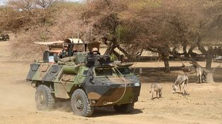 Des soldats français circulent à bord d'un véhicule blindé à Timbamogoye (Mali)le 10 mars 2016 dans le cadre de l'opération Barkhane. (PASCAL GUYOT / AFP)
